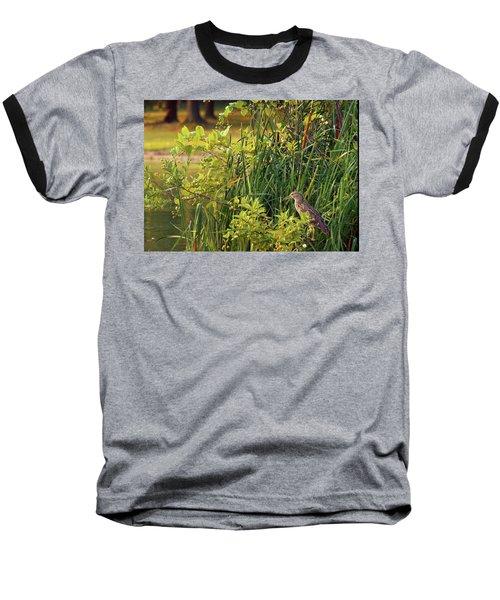 Hiden Baseball T-Shirt