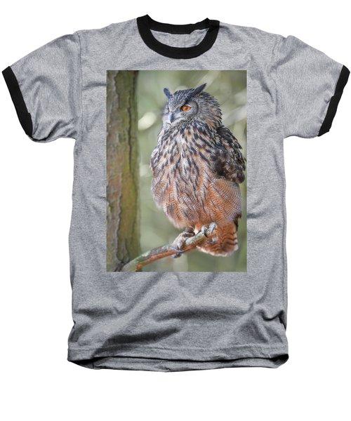 Hiding In The Trees Baseball T-Shirt