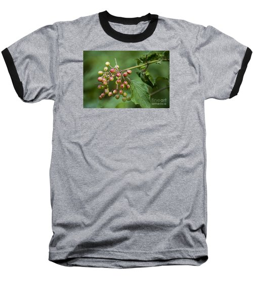 Baseball T-Shirt featuring the photograph High Bush Cranberry 20120703_106a by Tina Hopkins