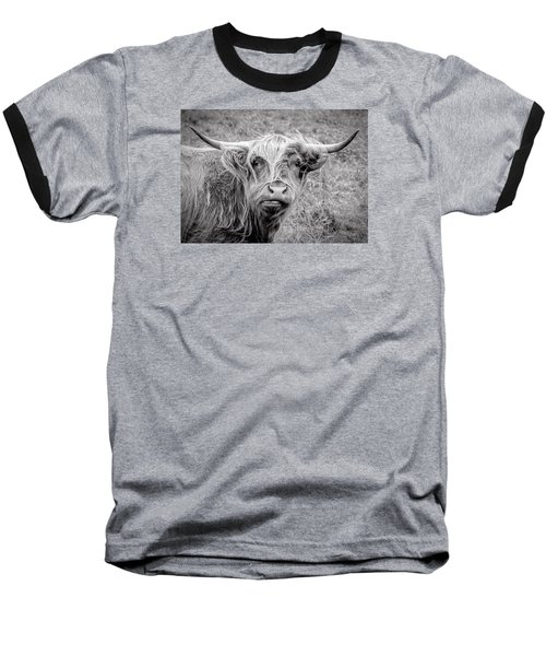 Highland Cow Baseball T-Shirt by Jeremy Lavender Photography