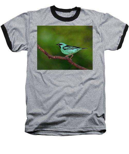 Highlight Baseball T-Shirt by Tony Beck
