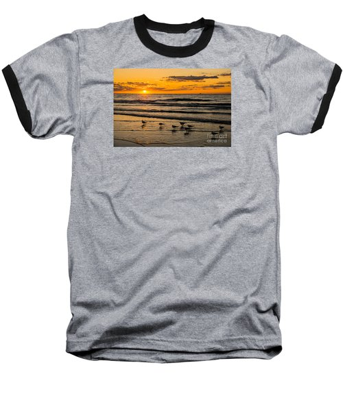 Hilton Head Seagulls Baseball T-Shirt by Paul Mashburn