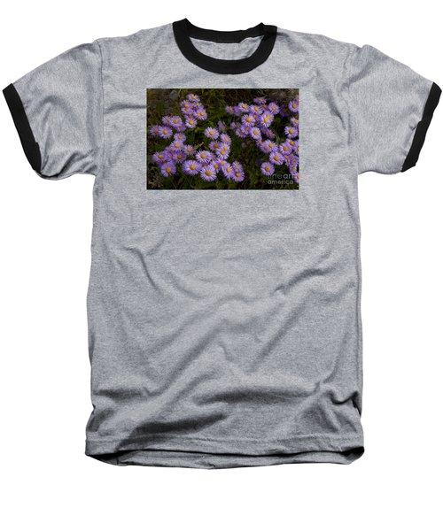 Hoary Tansyaster-signed-#9698 Baseball T-Shirt
