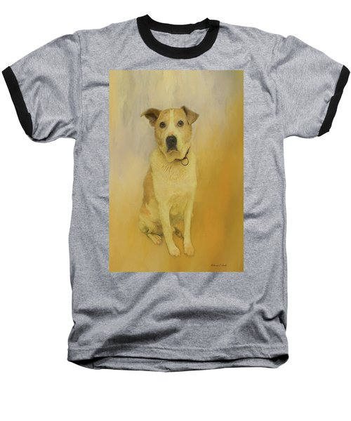 Baseball T-Shirt featuring the photograph Hobbit The Harrier Hound by Bellesouth Studio