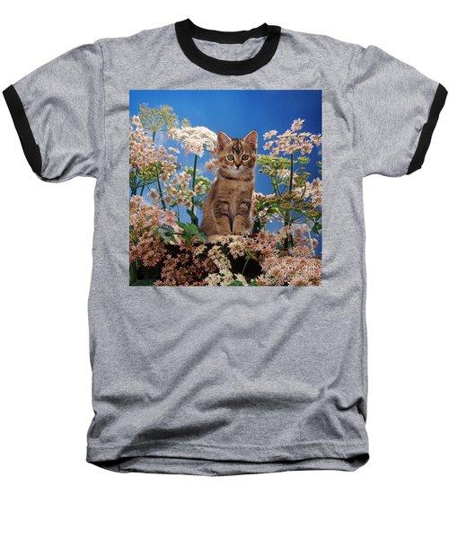 Hogging All The Hogweed Baseball T-Shirt