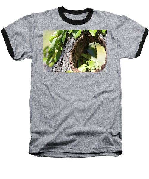 Hole Baseball T-Shirt