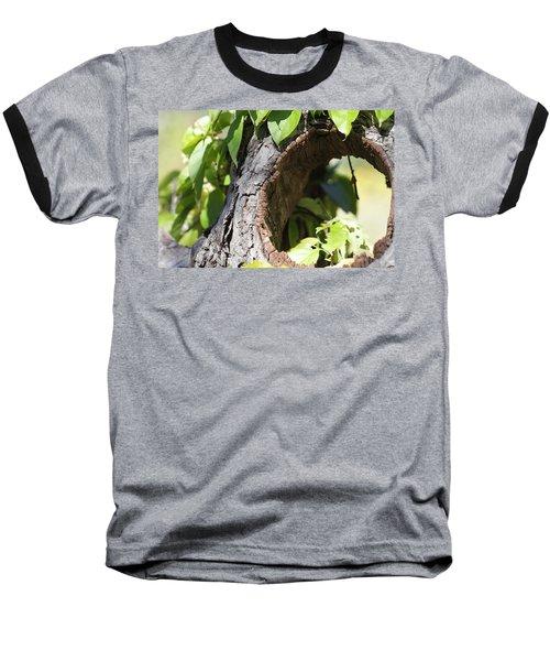 Hole Baseball T-Shirt