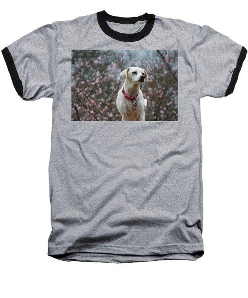 Holly Spring Baseball T-Shirt
