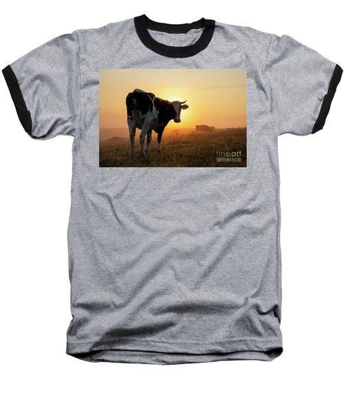 Holstein Friesian Cow Baseball T-Shirt