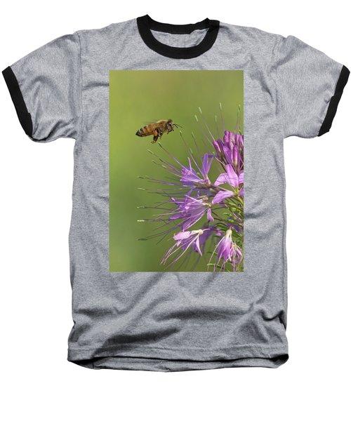 Honey Bee At Work Baseball T-Shirt