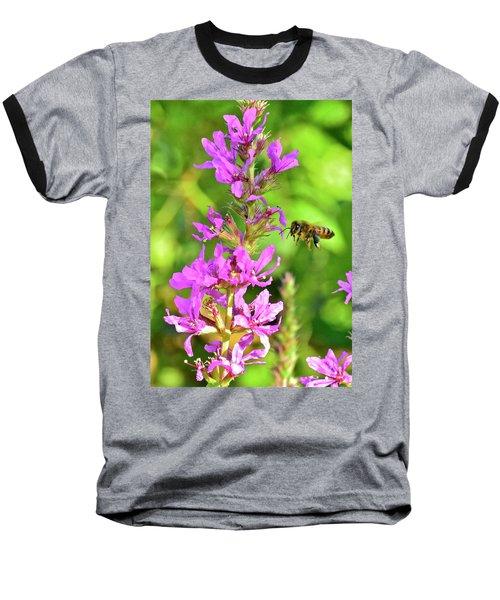 Honey Bee In Flight Baseball T-Shirt
