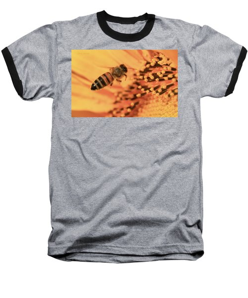 Baseball T-Shirt featuring the photograph Honeybee And Sunflower by Chris Berry
