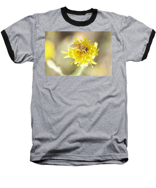 Honeybee Baseball T-Shirt