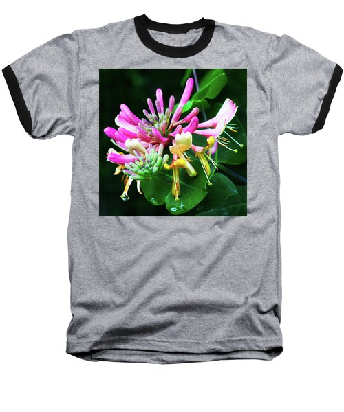 Honeysuckle Bloom Baseball T-Shirt