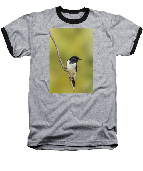 Hooded Robin Baseball T-Shirt
