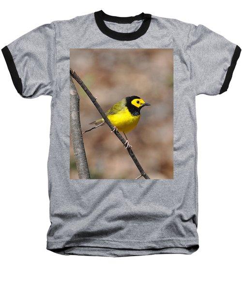 Hoodie Baseball T-Shirt