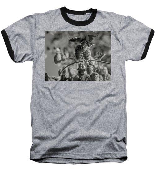 Hops Baseball T-Shirt