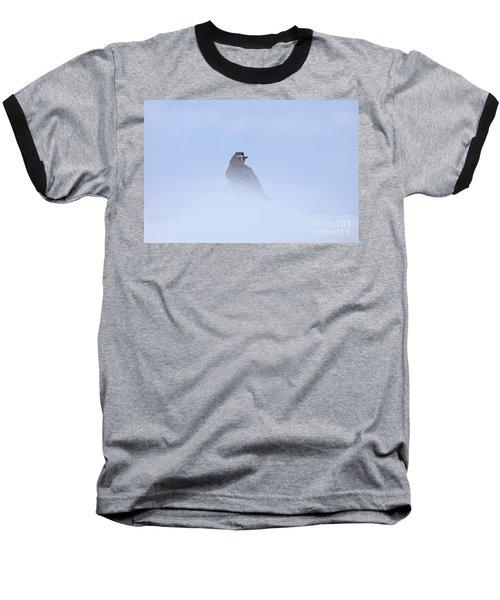 Horned Lark Baseball T-Shirt