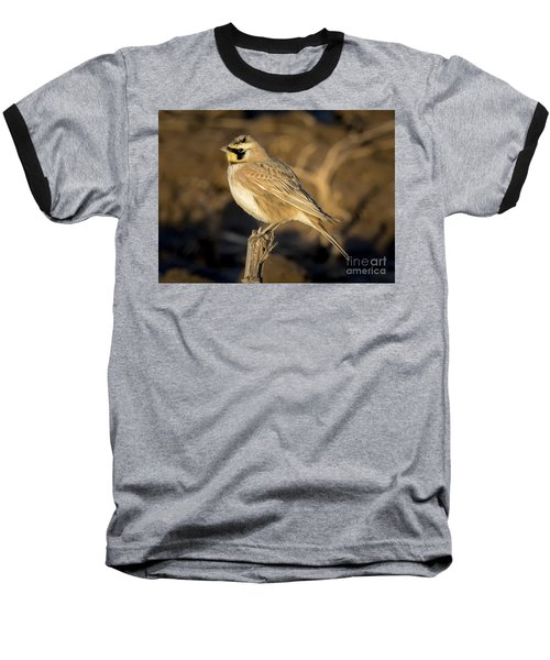 Horned Lark Baseball T-Shirt