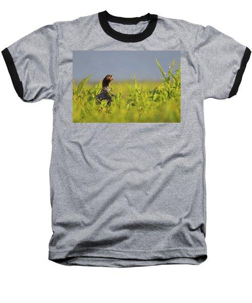 Horned Screamer Baseball T-Shirt