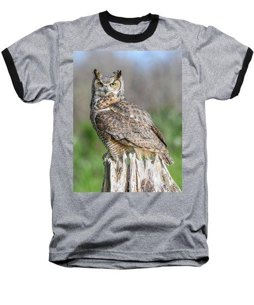 Horny... Baseball T-Shirt