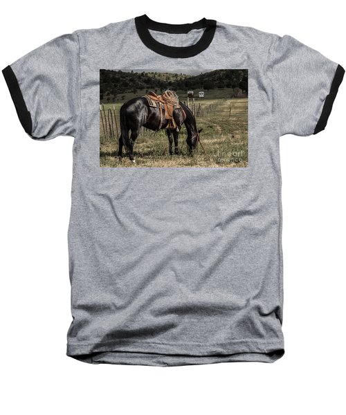 Horse 3 Baseball T-Shirt