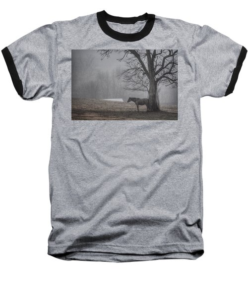 Horse And Tree Baseball T-Shirt by Sumoflam Photography