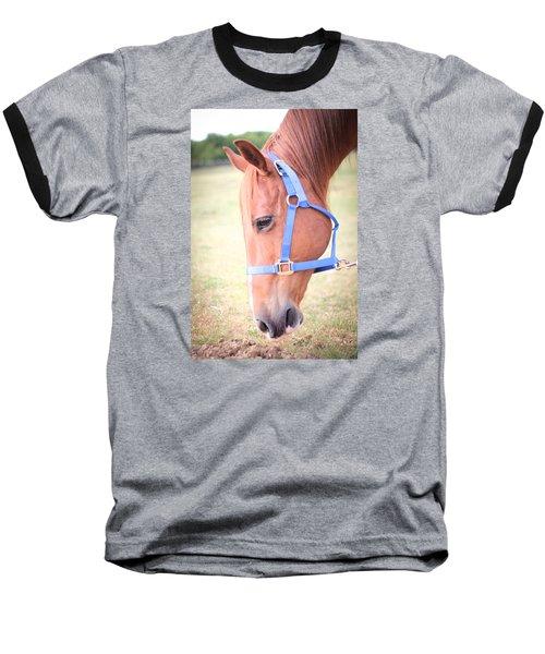 Horse Eating Grass Baseball T-Shirt by Kelly Hazel