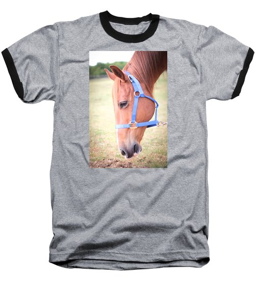 Horse Eating Grass Baseball T-Shirt