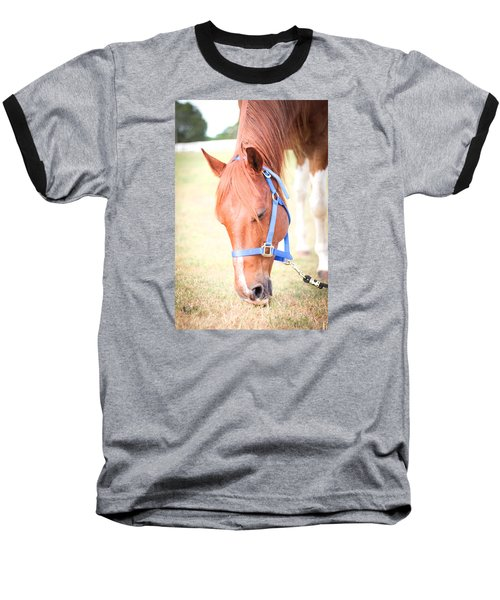 Horse Eating In A Pasture In Vibrant Color Baseball T-Shirt by Kelly Hazel