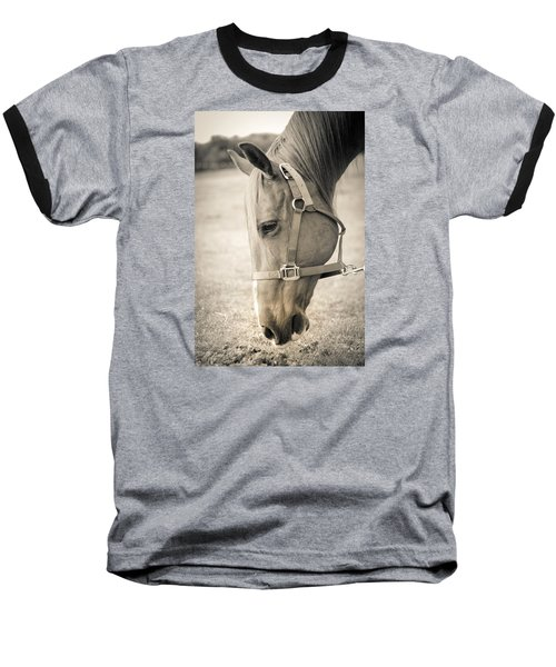 Horse Eating In A Pasture Baseball T-Shirt by Kelly Hazel