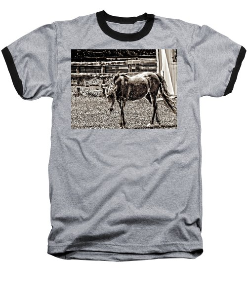 Horse In Black And White Baseball T-Shirt by Annie Zeno