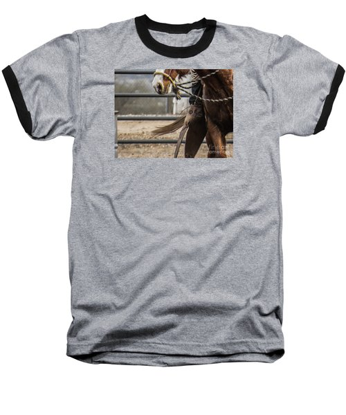 Horse In Hackamore Baseball T-Shirt