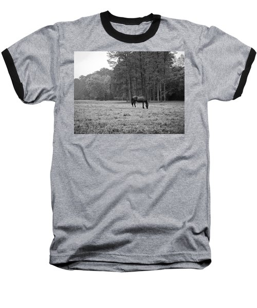 Horse In Pasture Baseball T-Shirt