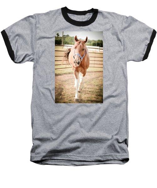 Horse Walking Toward Camera Baseball T-Shirt by Kelly Hazel