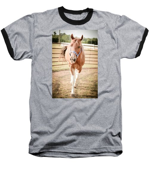 Horse Walking Toward Camera Baseball T-Shirt