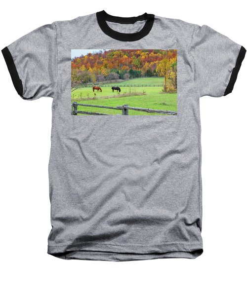 Horses Contentedly Grazing In Fall Pasture Baseball T-Shirt