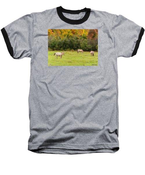 Horses Enjoying A Beautiful Autumn Day Baseball T-Shirt by Ken Morris