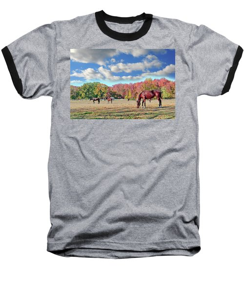 Horses Grazing At A Stable In Maryland Baseball T-Shirt