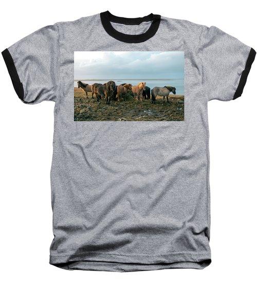 Horses In Iceland Baseball T-Shirt