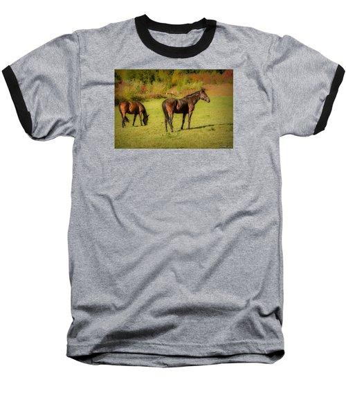 Horses In Mabou Baseball T-Shirt by Ken Morris