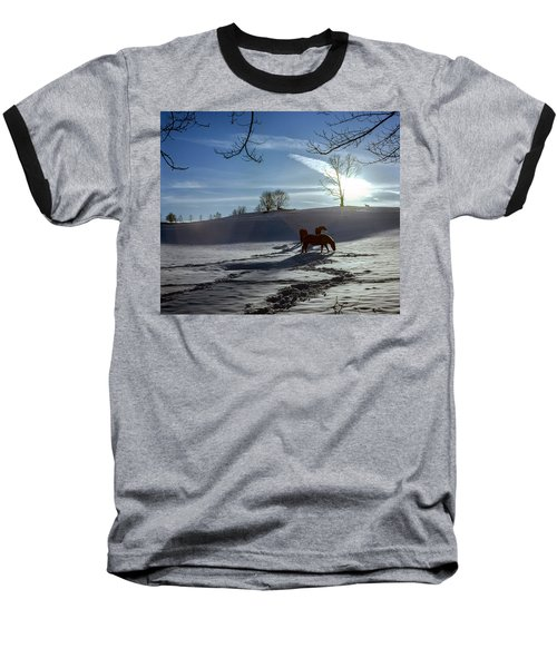 Horses In The Snow Baseball T-Shirt by Greg Reed