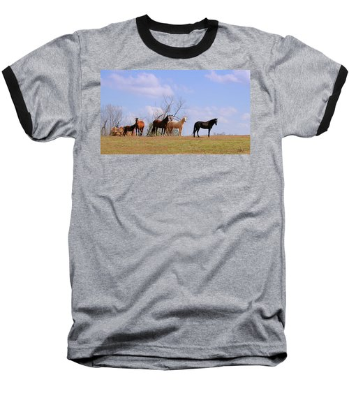 Baseball T-Shirt featuring the photograph Horses On The Hill by Bonnie Willis