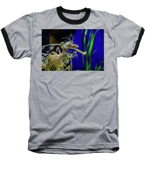 Horsey Baseball T-Shirt
