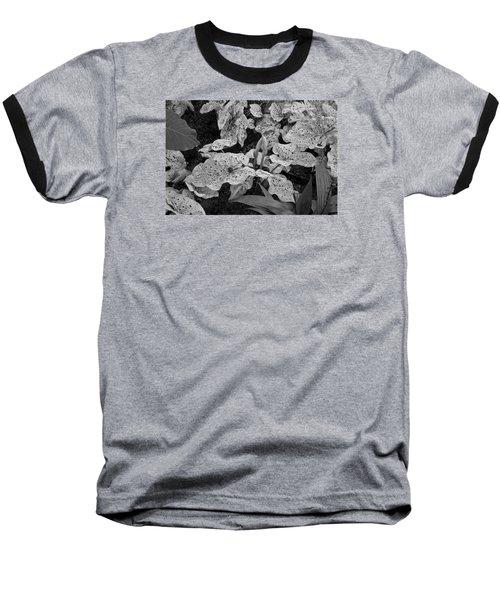 Baseball T-Shirt featuring the photograph Hosta Bw - Pla363 by G L Sarti