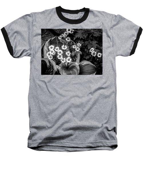 Hosta Daisies Baseball T-Shirt