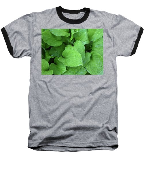 Hostas After The Rain IIi Baseball T-Shirt