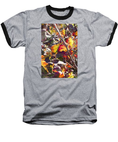 Hot Autumn Colors In The Vineyard 02 Baseball T-Shirt