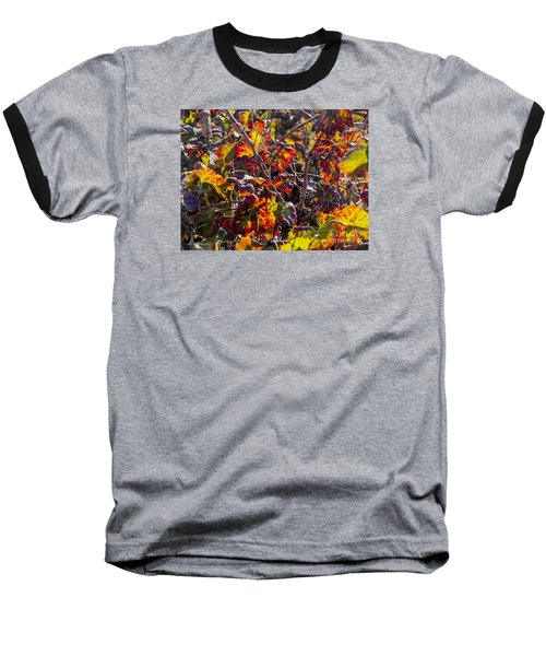 Hot Autumn Colors In The Vineyard 03 Baseball T-Shirt