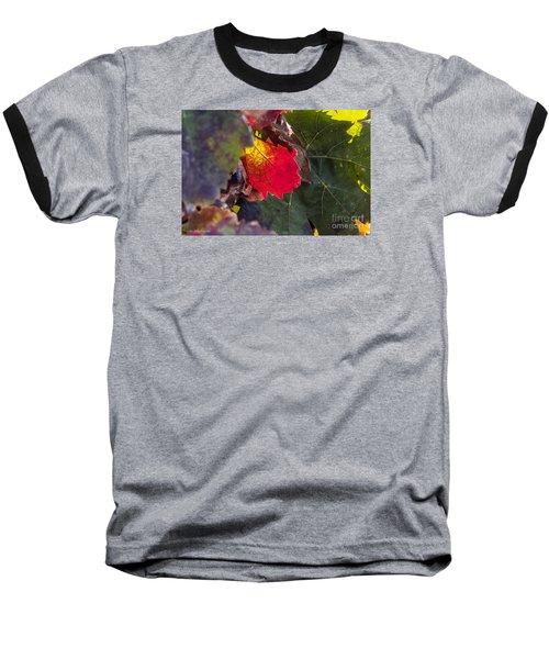 Hot Autumn Colors In The Vineyard Baseball T-Shirt by Arik Baltinester